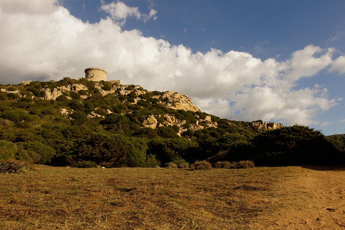 Plaine derrière la tour de Campomoro